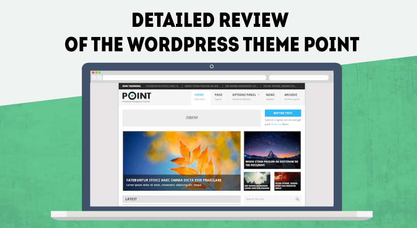 Detailed Review Of The Wordpress Theme Point
