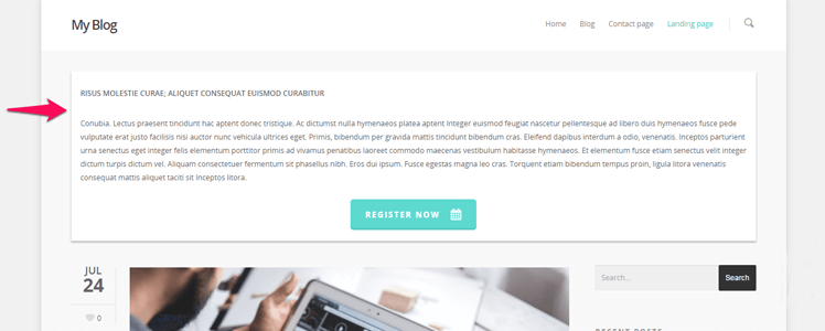 WordPress Theme Salient 20