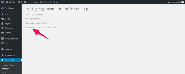 WordPress subscription plugin 1