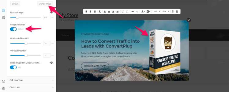 WordPress Subscription Plugin 14