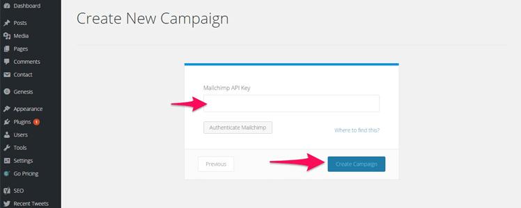 WordPress Subscription Plugin 21