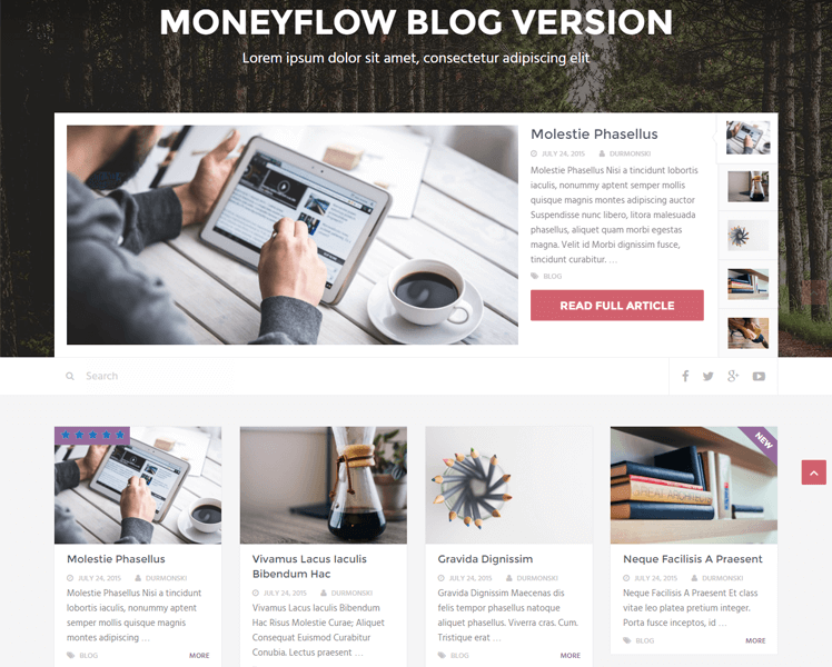 MoneyFlow WordPress Theme Review 17