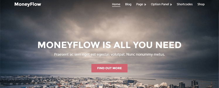 MoneyFlow WordPress Theme Review