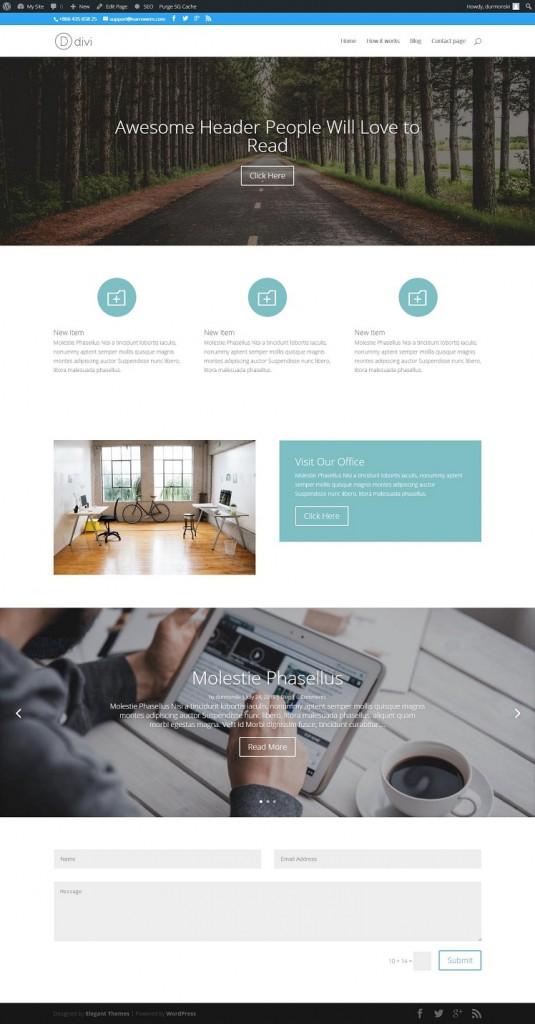 Divi WordPress Theme 24