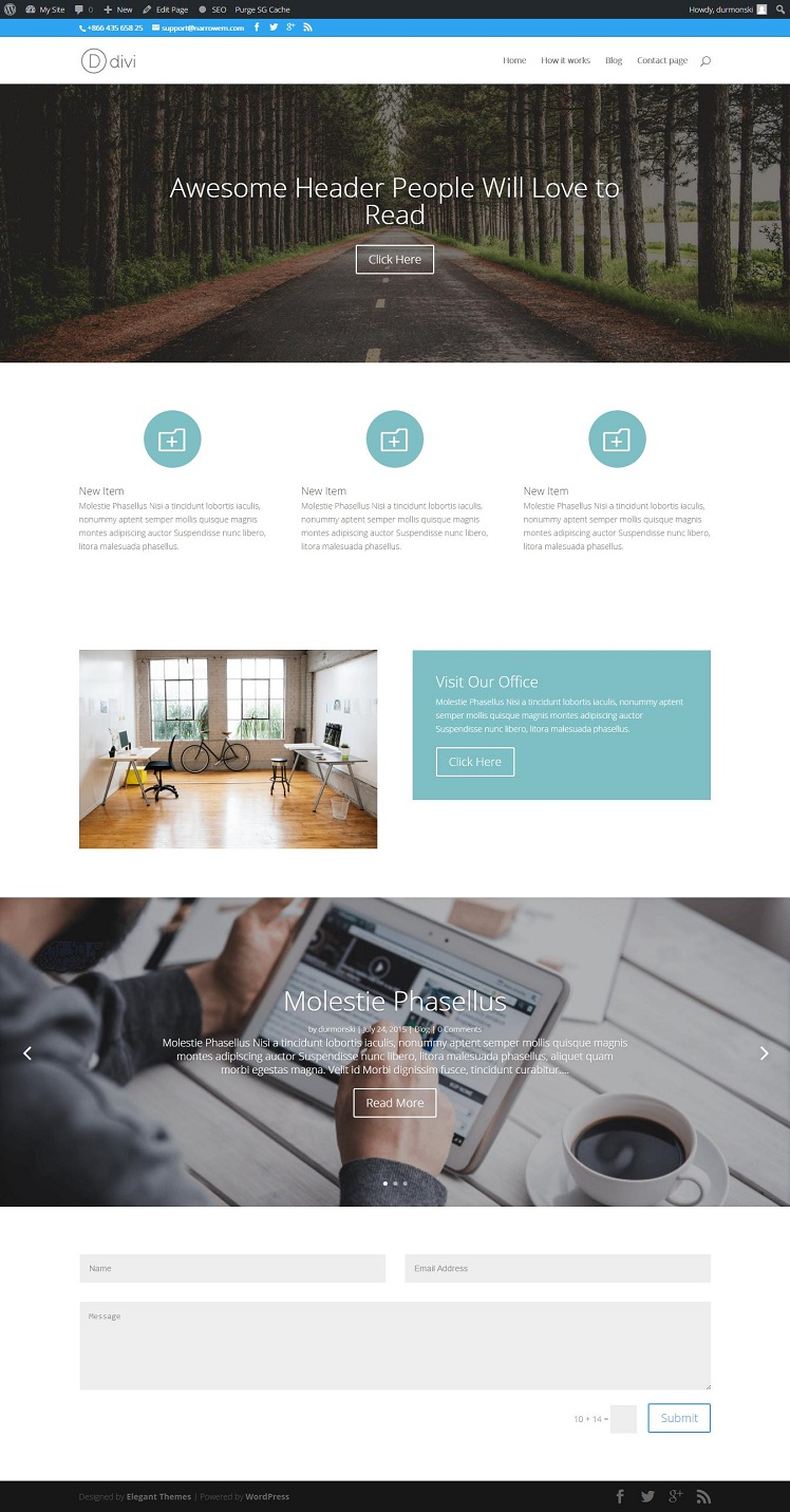 Divi WordPress Theme 24
