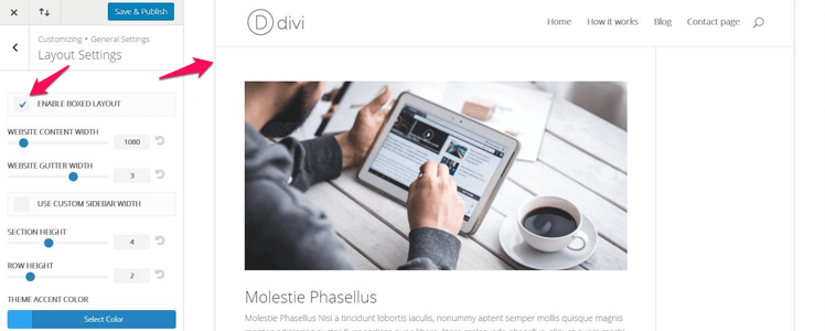 Divi WordPress Theme 25