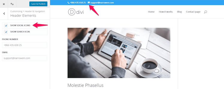 Divi WordPress Theme 27