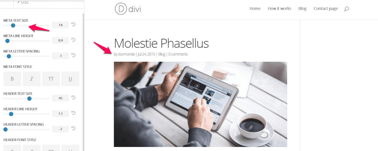 Divi WordPress Theme 29