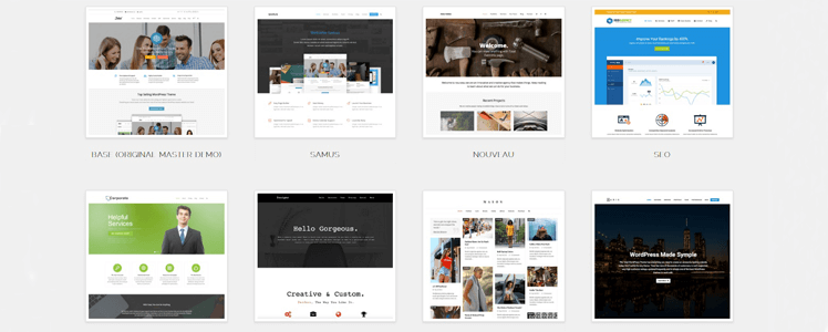 Total WordPress Theme 7