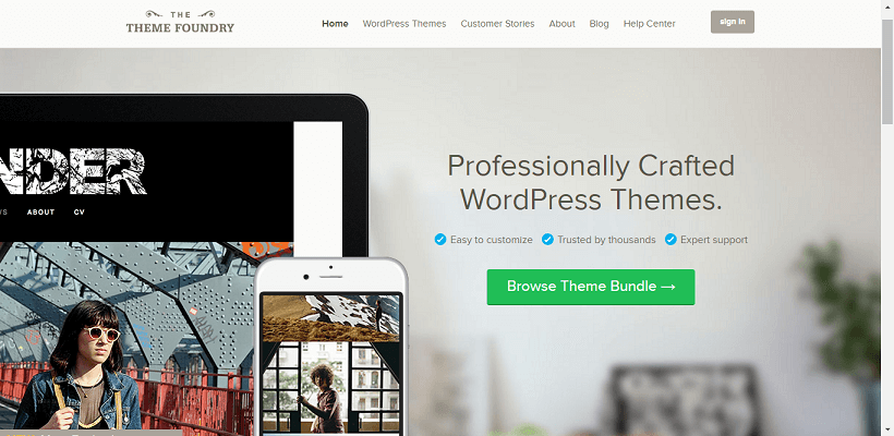 best premium wordpress themes 14