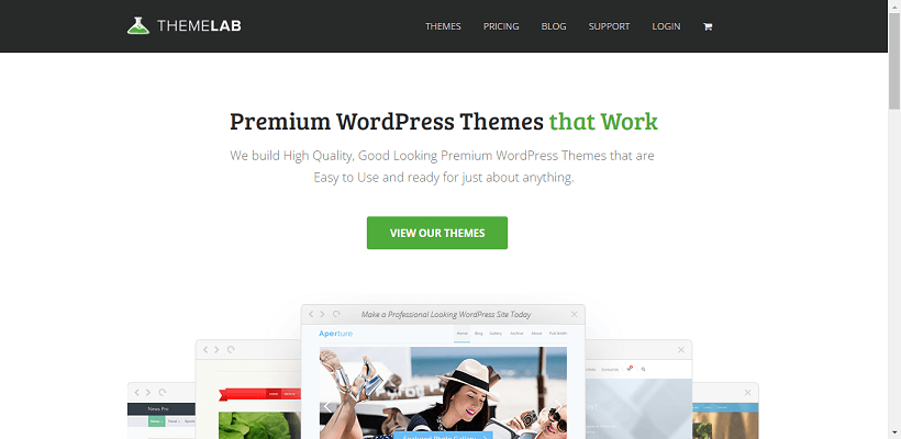 best premium wordpress themes 19