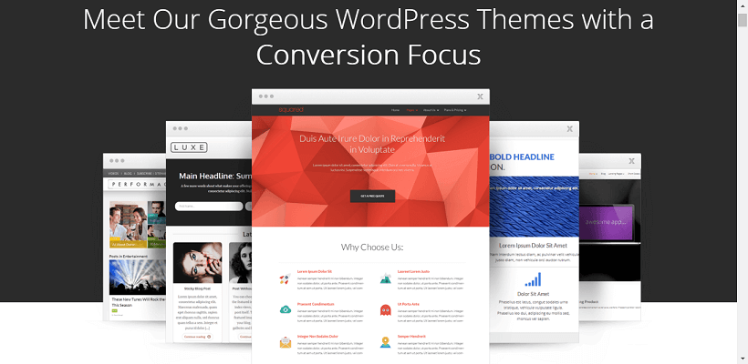 best premium wordpress themes 27
