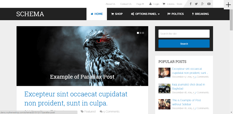 Schema WordPress blog theme