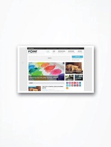 WordPress Theme Point Review
