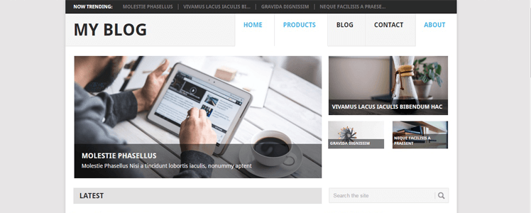 free wordpress theme point 5