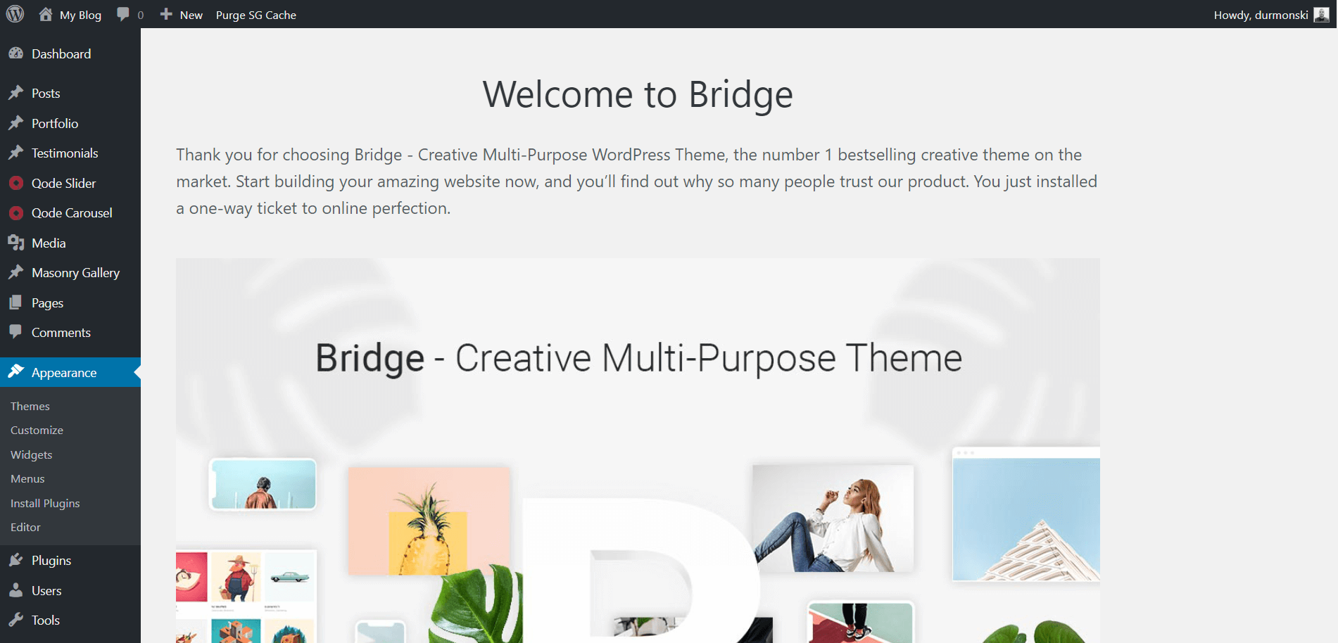 Review of the WordPress theme Bridge 2