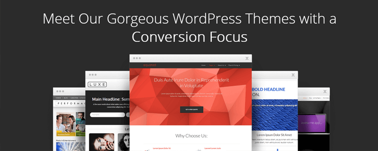 Size Specs WordPress Themes