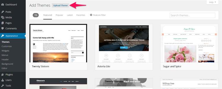 Divi WordPress Theme 1
