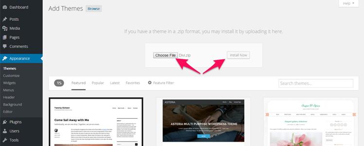 Divi WordPress Theme 2
