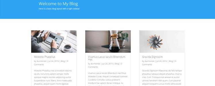 Divi WordPress Theme 30