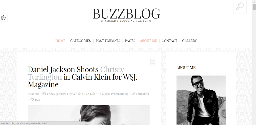 Buzzblog WordPress blog theme