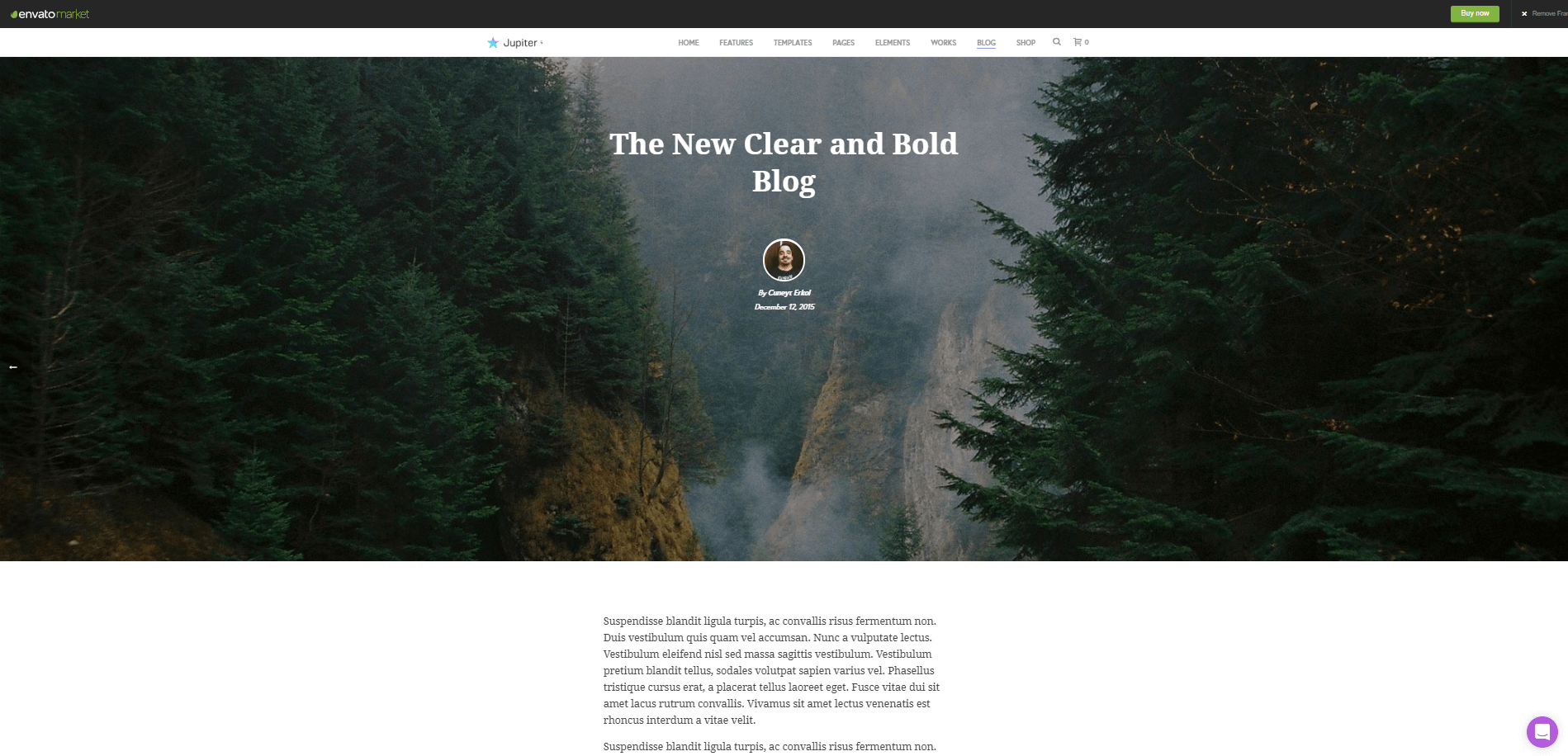 Jupiter WordPress Theme 3