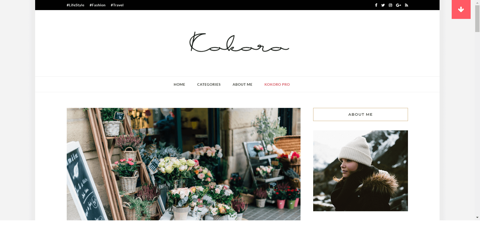 Kokoro WordPress Theme