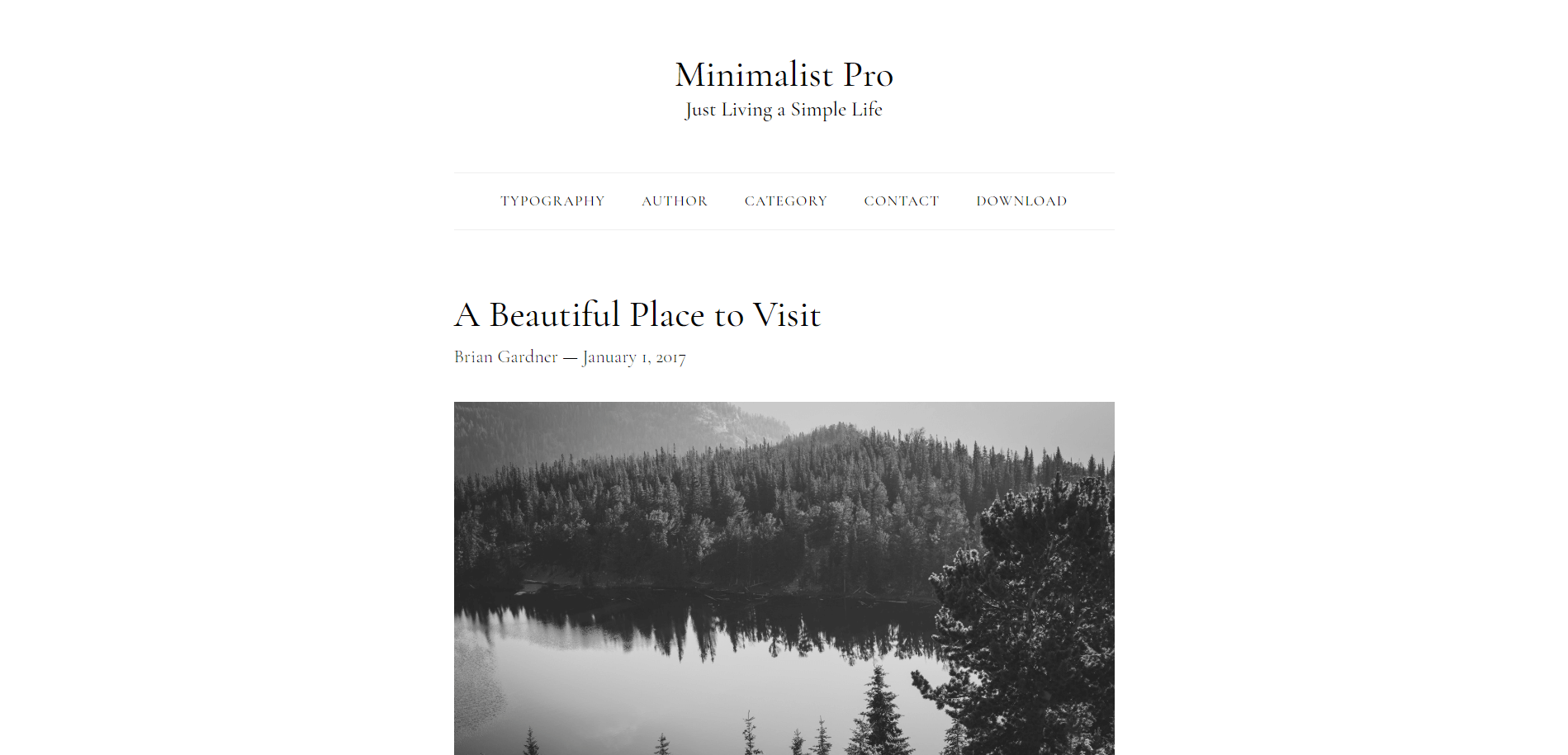 Minimalist Pro Minimal WordPress Theme