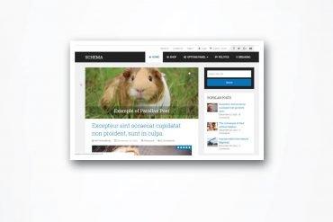 Schema WordPress Theme review