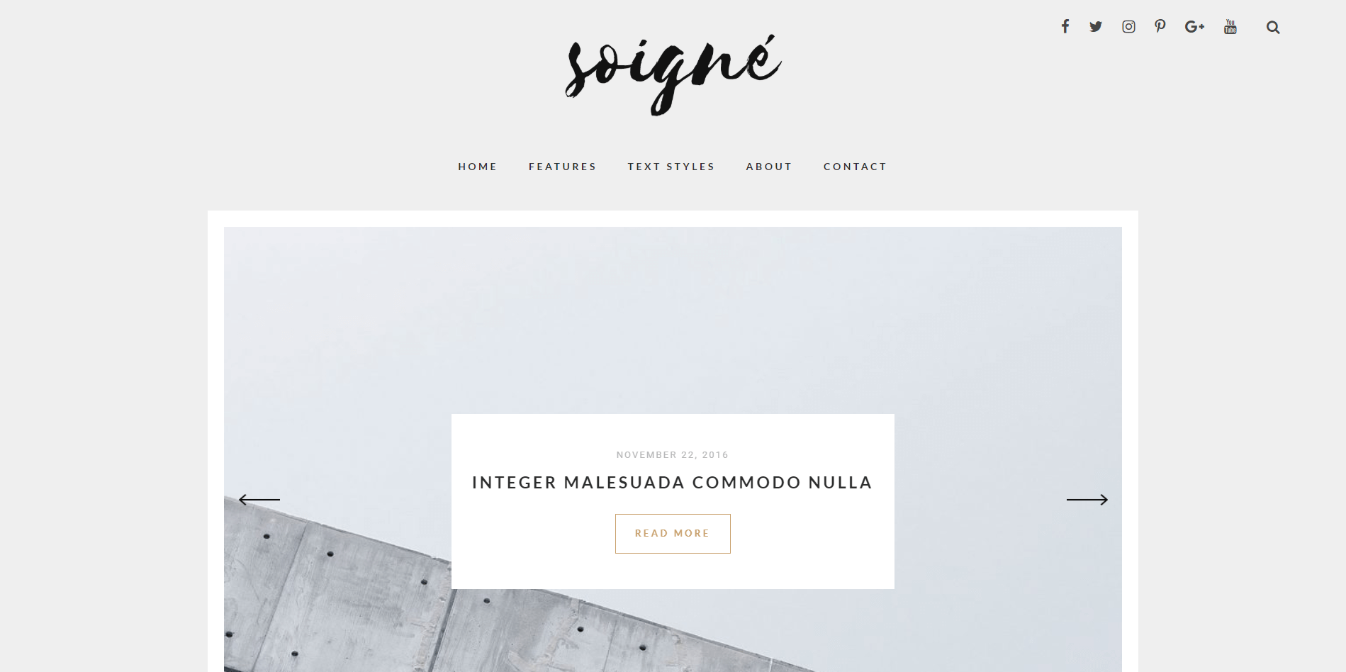 Soigne WordPress Minimal Theme