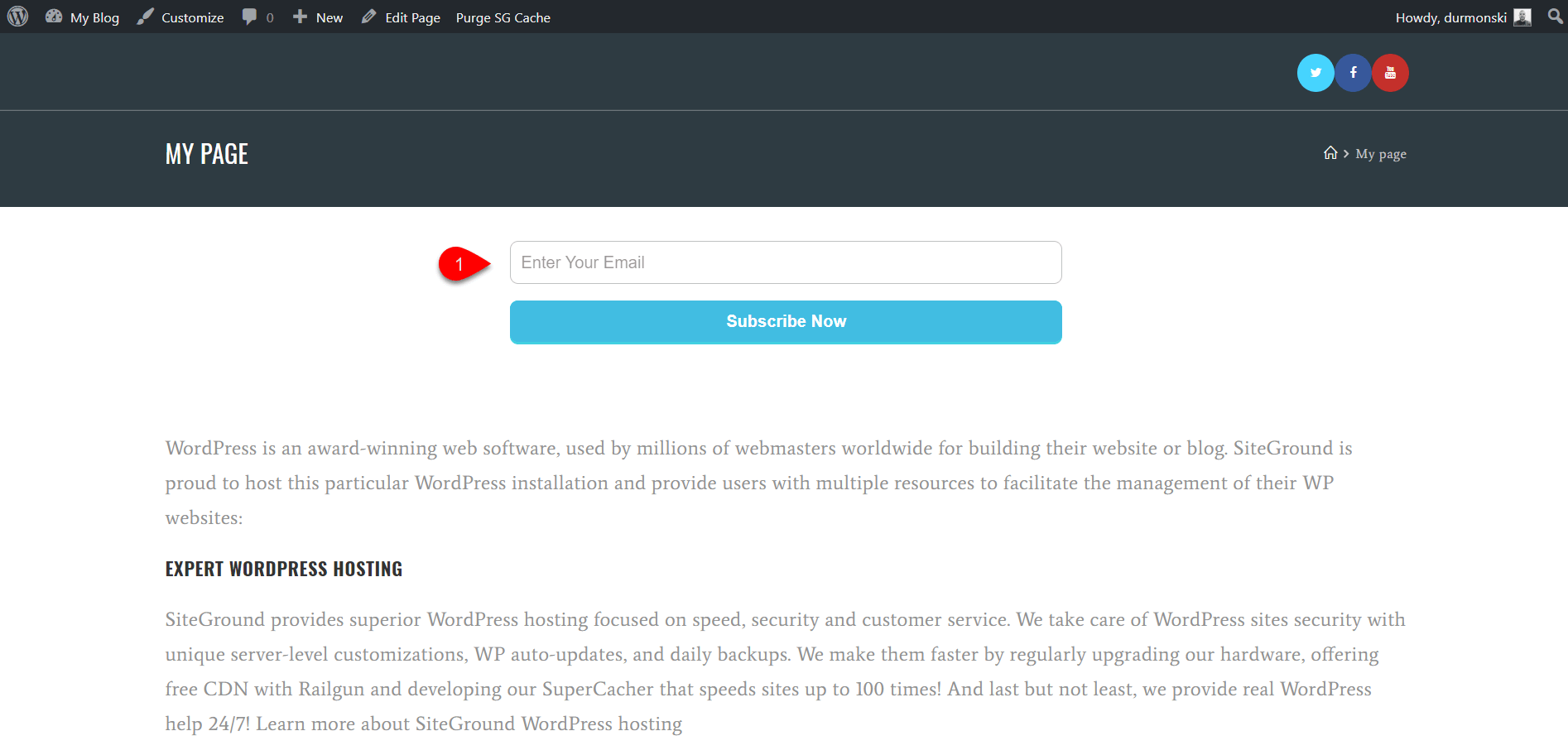 OceanWP WordPress Theme Review 39