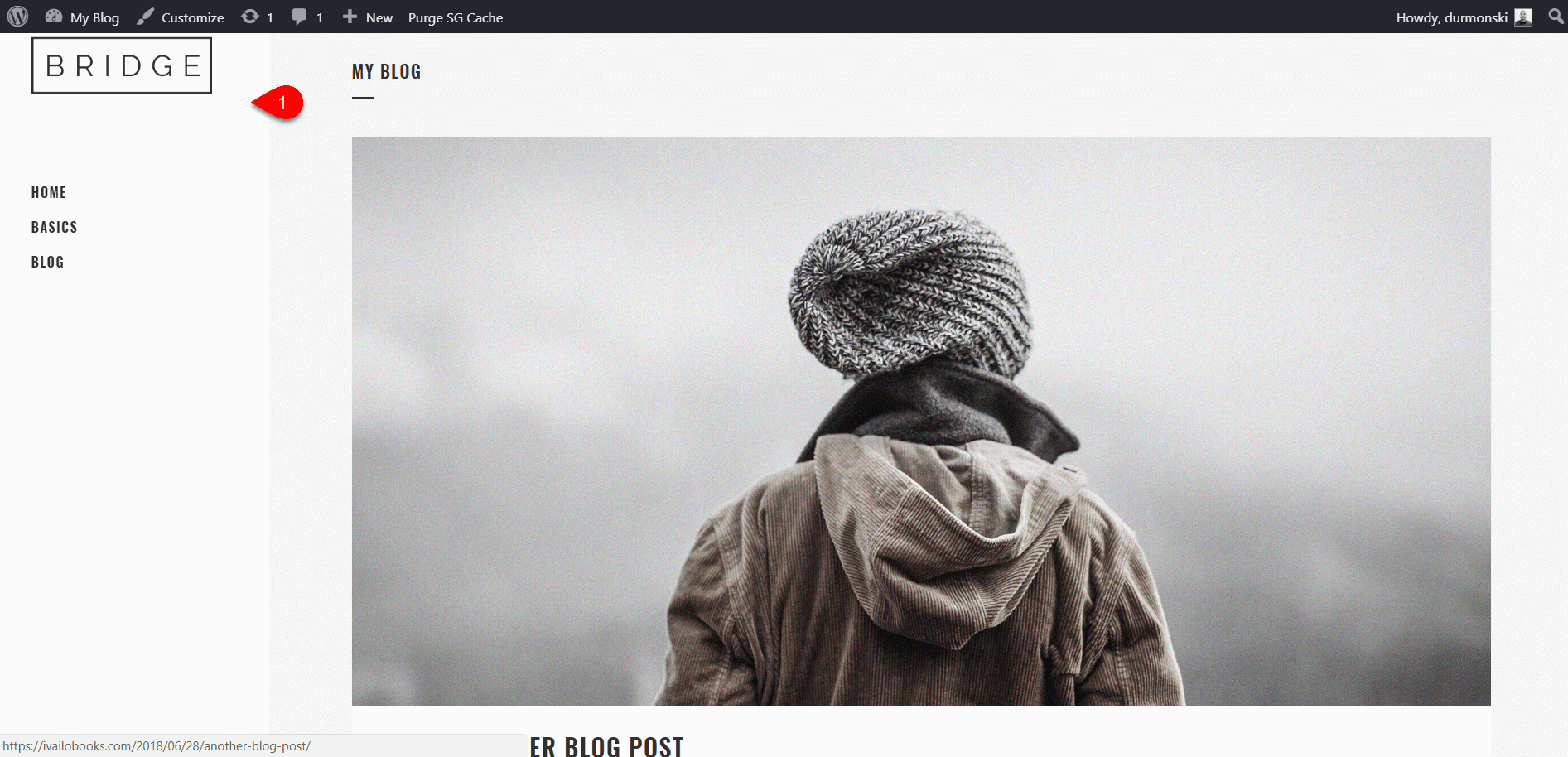 Review of the WordPress theme Bridge 15