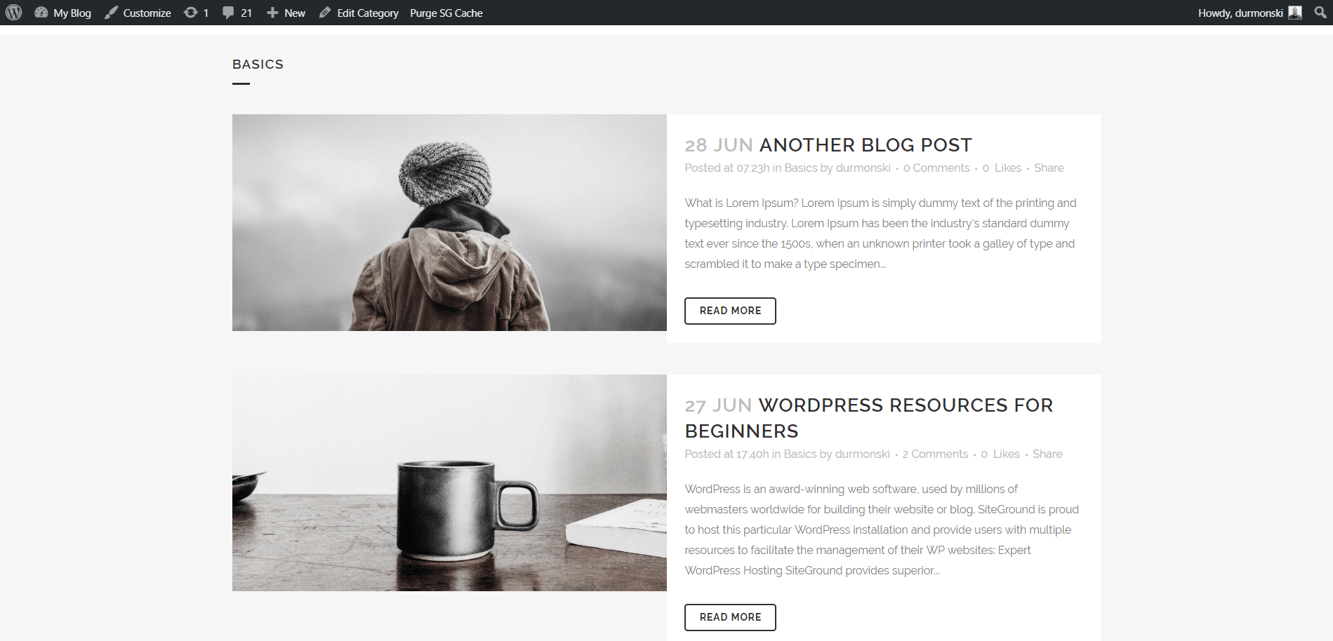 Review of the WordPress theme Bridge 41