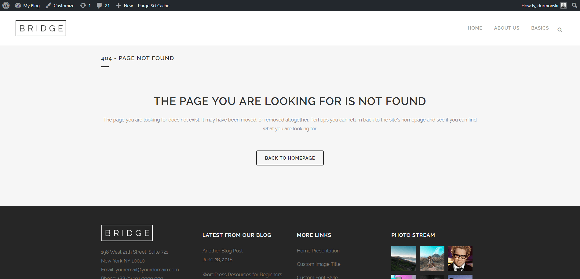 WordPress theme Bridge 404 page