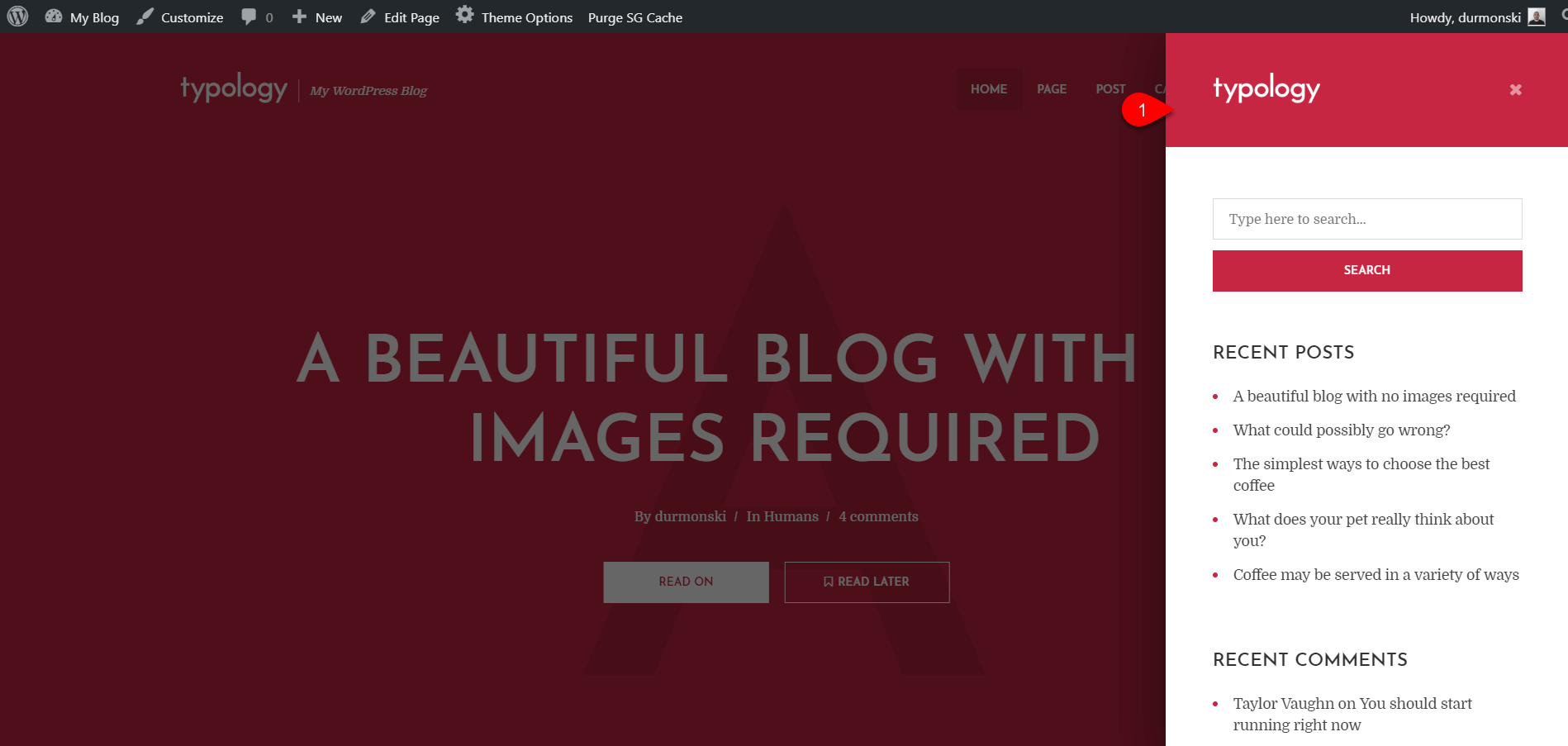Installing Typology WordPress Theme 13