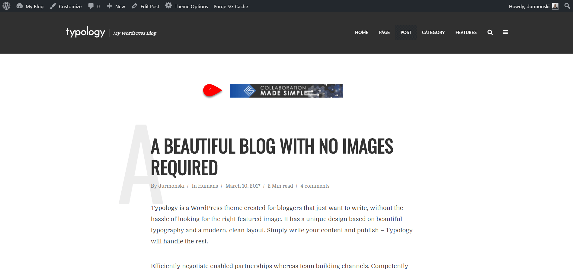 Installing Typology WordPress Theme 19