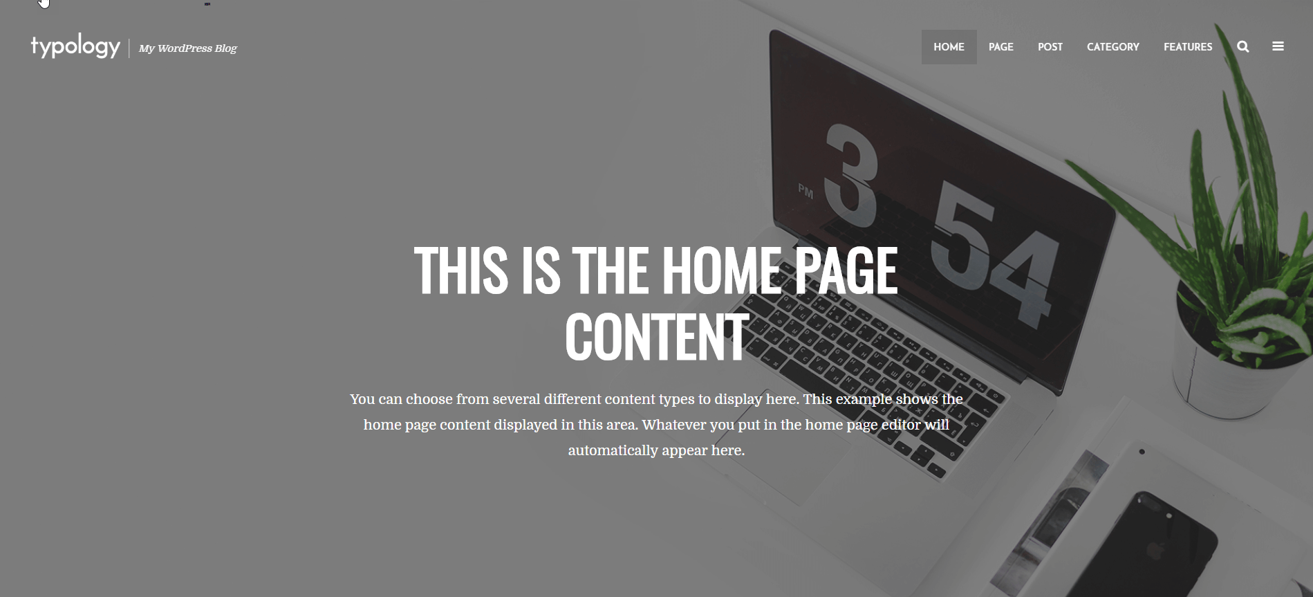 Installing Typology WordPress Theme 25