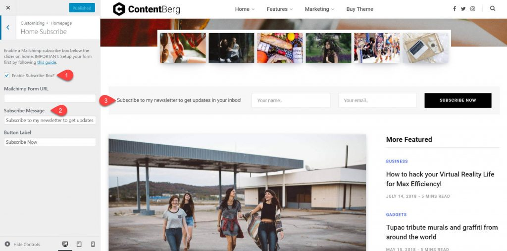 contentberg theme review 9